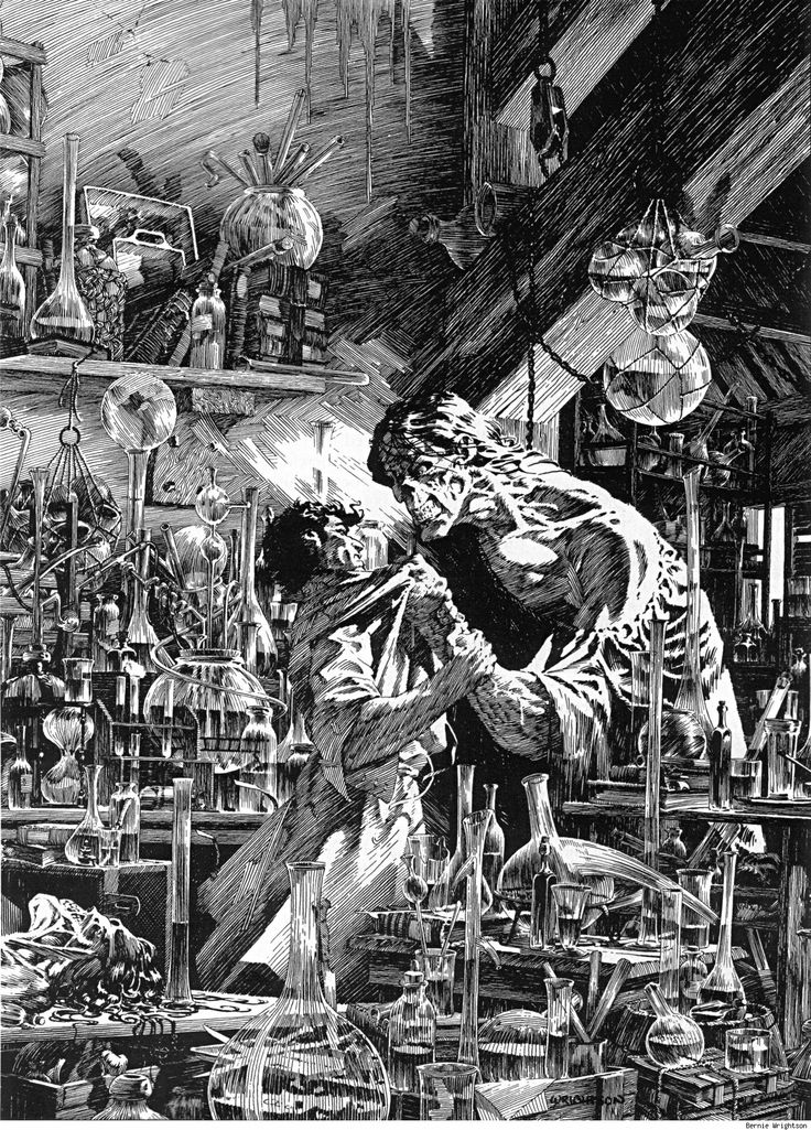 the questionable morality of doctor victor frankenstein in mary shelleys gothic novel frankenstein Follow tv tropes browse tv tropes ask  recap/doctor who50th prequel the night of the doctor  film/mary shelleys frankenstein videogame/mary skelter.