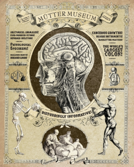 """The Mütter Museum, established in Philadelphia, PA in 1858, contains the skeleton of conjoined twins Chang and Eng, as well as other medical anomalies, collected """"to help the public understand the mysteries and beauty of the human body while appreciating the history of diagnosis and treatment of disease"""". Source: http://strangedaze.doomby.com/medias/images/post-2.jpg"""