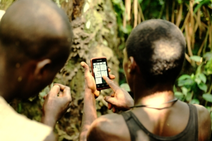 Mapping the rainforest? I've got an app for that.
