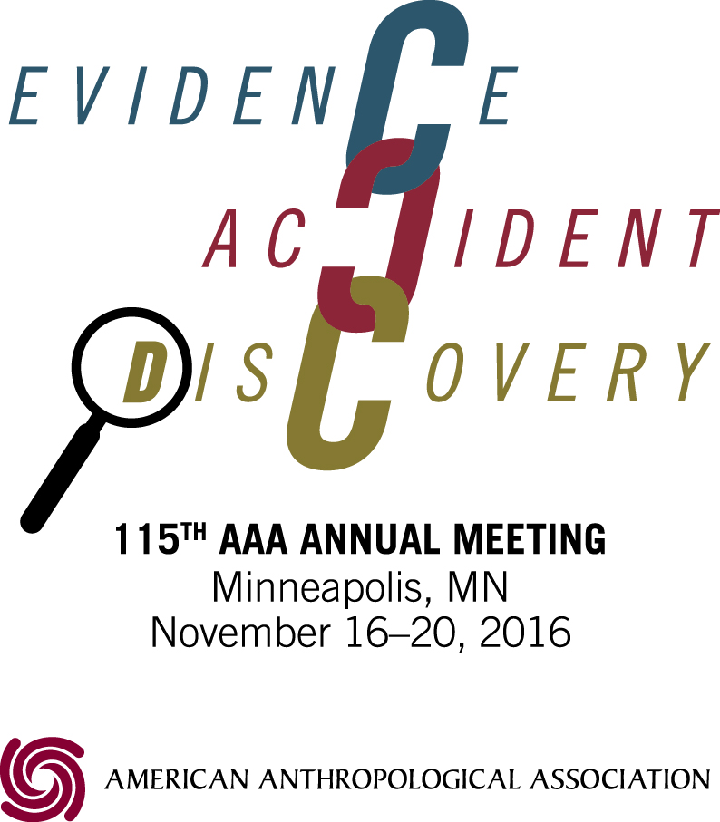 Postmortem and Possibilities: Reflections on AAA 2016